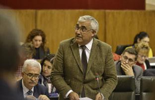 El consejero Antonio Ramírez de Arellano en la sesión plenaria del Parlamento